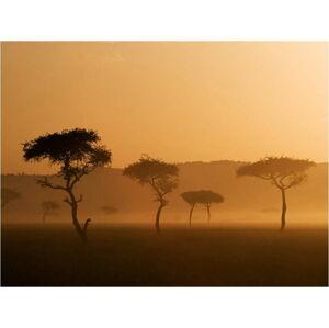 Velkoformátová tapeta Artgeist Massai Mara,400x309cm