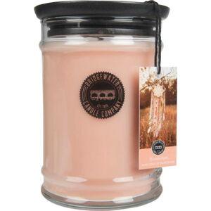 Svíčka ve skleněné dóze s vůní meruňky a vanilky Bridgewater candle Company Wanderlust, doba hoření 140-160 hodin