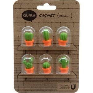Sada 6 magnetů Qualy&CO Cacnet