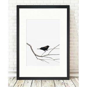 Obraz Tablo Center Birdy, 24x29cm